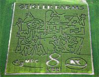 Geisler Farms Cornmaze