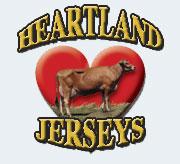Heartland Jerseys