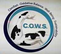 Novus COWS