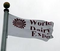 Expo Flag
